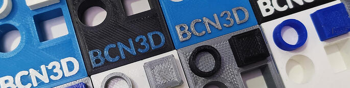 Dual print models on BCN3D PLA white gray black and blue