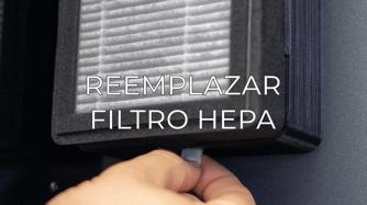 replace HEPA filter ES